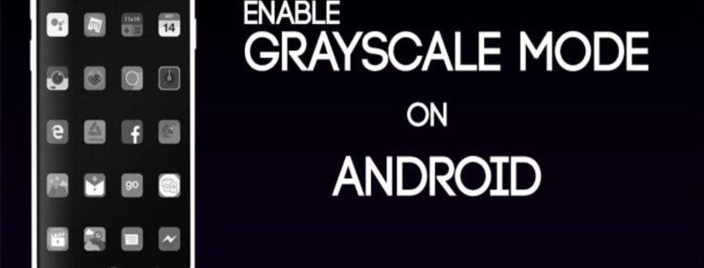 Cómo habilitar el modo monocromo de tu Xiaomi
